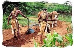 İlk Tarımsal Yerleşmeler