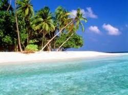 Tropik Bölgeler