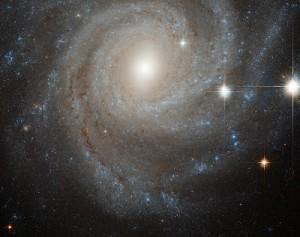 Yıldız Sistemleri, Kümeleri