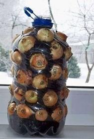 Soğanlı pet şişe