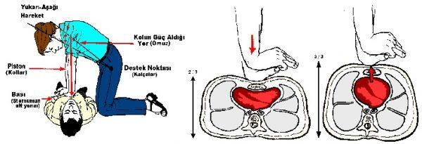 Kalp masajı